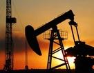 """Giá dầu giảm mạnh sau khi Iran từ chối """"đóng băng"""" sản lượng"""
