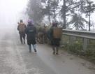 Sa Pa đón lạnh 6 độ C, nước lũ sông Hồng dâng cao