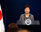 Bà Park Geun-hye điều trần trước Quốc hội về vụ phà Sewol