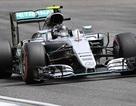 Nico Rosberg thi đấu chói sáng tại sân nhà