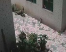Bí ẩn mưa tiền và 2 xác chết ở Trung Quốc