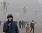 Ô nhiễm không khí có thể gây bệnh thận