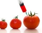 10 thực phẩm dễ gây ung thư cần tránh xa