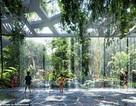 """Khách sạn """"sở hữu"""" cả rừng nhiệt đới và bãi biển nhân tạo đầu tiên trên thế giới"""