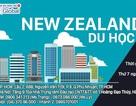 Du học New Zealand – Giải pháp tài chính tối ưu với cơ hội việc làm và định cư cao