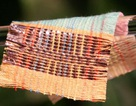 Vải mới sử dụng ánh nắng mặt trời và gió để cung cấp năng lượng