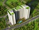 Ecohome phúc lợi căn hộ xanh giá trên dưới 1 tỷ