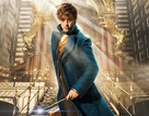 """Loạt phim """"Harry Potter"""" sẽ có tới năm """"đàn em"""" ăn theo"""