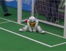 Giải bóng đá dành cho rô bốt