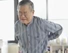 Đau xương khớp ở người cao tuổi - hãy quan tâm nhiều hơn
