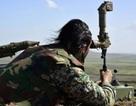 Chiến sự Aleppo: Quân chính phủ đại thắng, IS lộ điểm yếu