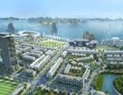 Lựa chọn mới cho giới nhà giàu Quảng Ninh