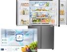 Những lầm tưởng về bảo quản thực phẩm an toàn trong tủ lạnh