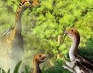 Một vài loài khủng long có răng khi mới sinh