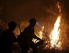 Cháy rừng ở miền Tây nước Mỹ đã tăng gấp đôi trong vòng 30 năm qua