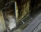 Nhà vệ sinh trường học: Nỗi khổ câm lặng suốt bao năm qua