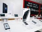 iPhone 7/7 Plus rơi vỡ, vào nước… vẫn được đổi mới?