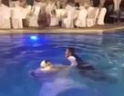Nhảy xuống bể bơi ăn mừng, cô dâu suýt chết đuối