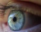 8 bài tập cho mắt sáng khỏe
