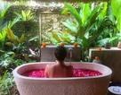 Top 10 điều cần làm khi đi du lịch Bali