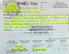 """Việt kiều Đức khẩn thiết đề nghị khởi tố bị can trong vụ lừa đảo bán đất """"vịt trời"""""""