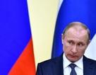 """Điện Kremlin lên tiếng về tài liệu mật tố cộng sự của ông Putin """"nhúng chàm"""""""