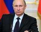 82% người dân Nga ủng hộ Tổng thống Putin