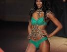 Người mẫu Victoria's Secret sắp tới Việt Nam