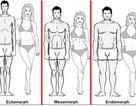 """Gợi ý chế độ ăn giảm cân theo """"tạng người"""""""