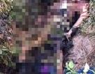 Khánh Hòa: Kinh hoàng người phụ nữ chăn bò bị đốt xác ở nghĩa trang