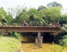 Gian dối trong thiết kế xây cầu gây nứt hàng loạt nhà dân