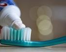 Các microbead độc hại sẽ bị cấm sử dụng