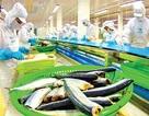 """VASEP muốn Formosa """"đền"""" cho doanh nghiệp xuất khẩu thủy sản vì vụ cá chết"""