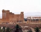 Palmyra- viên ngọc quý- mà quân đội Syria chiếm lại từ IS