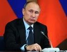 """Hôm nay Tổng thống Putin sẽ đọc Thông điệp liên bang """"đặc biệt"""""""