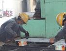 Vào TPP, Việt Nam bảo đảm quyền lập tổ chức của người lao động