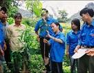 Bộ Nội vụ trả lời về bố trí đội viên Dự án 600 Phó Chủ tịch xã