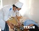 Yên Bái: Hơn 30 người bị tiêu chảy do ăn thịt trâu chết để lâu ngày