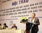 Đổi mới công nghệ đưa Việt Nam đứng top 3 các nước xuất khẩu gạo