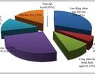 TP.HCM: Hơn 80% nhu cầu tuyển nhân lực CNTT cần kinh nghiệm