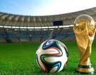 Việt Nam sẽ tranh cử đăng cai World Cup 2034?
