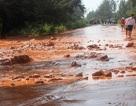Phó Thủ tướng: Làm rõ sai phạm vụ vỡ hồ bùn thải titan