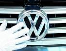 Volkswagen giảm 30.000 nhân công, dồn tiền khôi phục thương hiệu