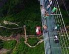 Tổ chức đám cưới bằng cách treo mình dưới cây cầu treo