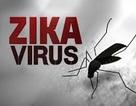 Ca nhiễm Zika tại Nhật Bản không phải người Việt Nam