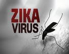 Phát hiện ca nhiễm vi rút Zika đầu tiên tại tỉnh Bà Rịa - Vũng Tàu