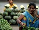 Ấn Độ vượt Mỹ trở thành thị trường smartphone lớn thứ 2 trên thế giới