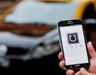 """Tài xế Uber ở Mỹ kiếm """"5 sao"""" thế nào?"""