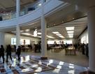 Chưa kịp bày bán, Apple Store ở Mỹ đã bị trộm hơn 300 chiếc iPhone X