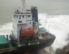 Điều tra các tàu không vào cảng trú bão, làm thuyền viên chết, mất tích